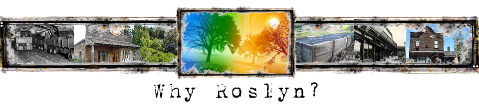 Why Roslyn?