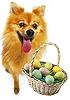 ARRF Doggie Easter Egg Hunt